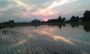 夏至の夕日20140629