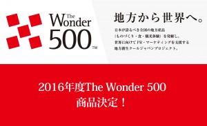The Wonder 500